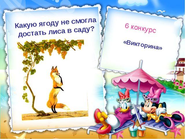 «Викторина» 6 конкурс Какую ягоду не смогла достать лиса в саду?