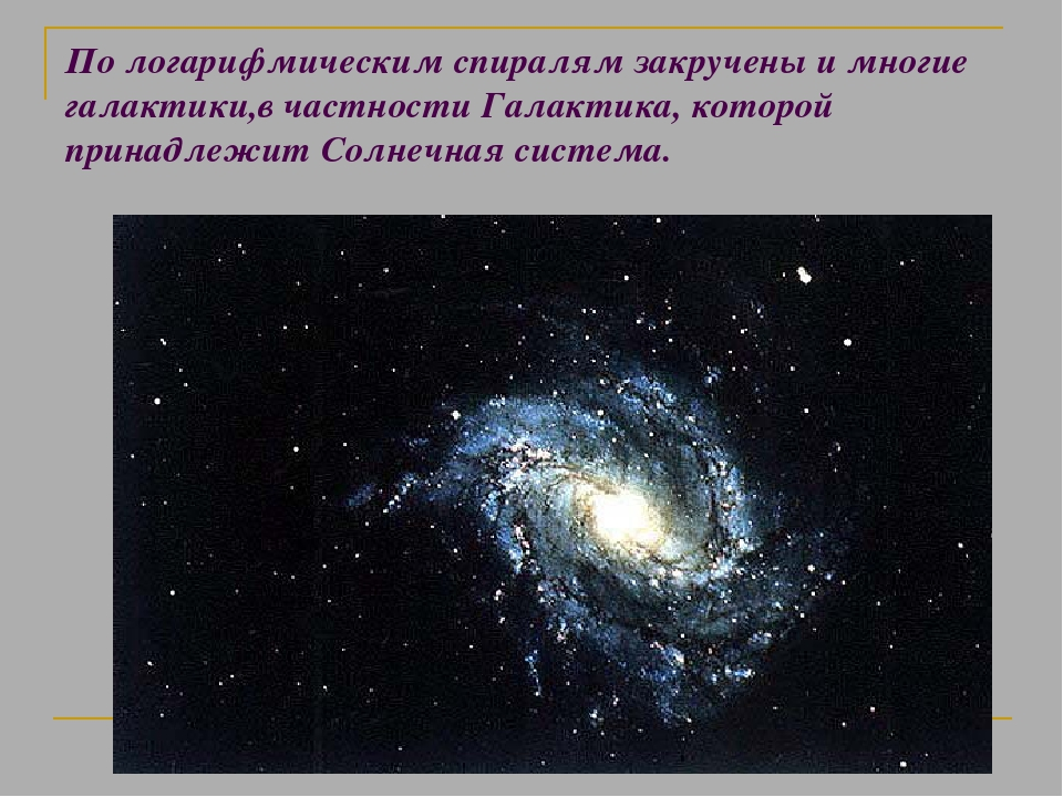 По логарифмическим спиралям закручены и многие галактики,в частности Галактик...