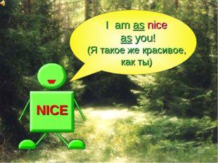 NICE I am as nice as you! (Я такое же красивое, как ты)