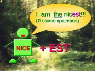 NICE + EST I am the nicest!!! (Я самое красивое)