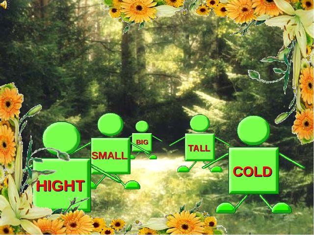TALL HIGHT COLD SMALL BIG