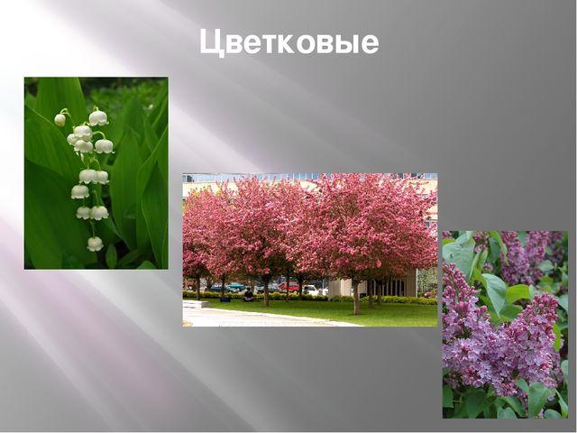 Цветковые