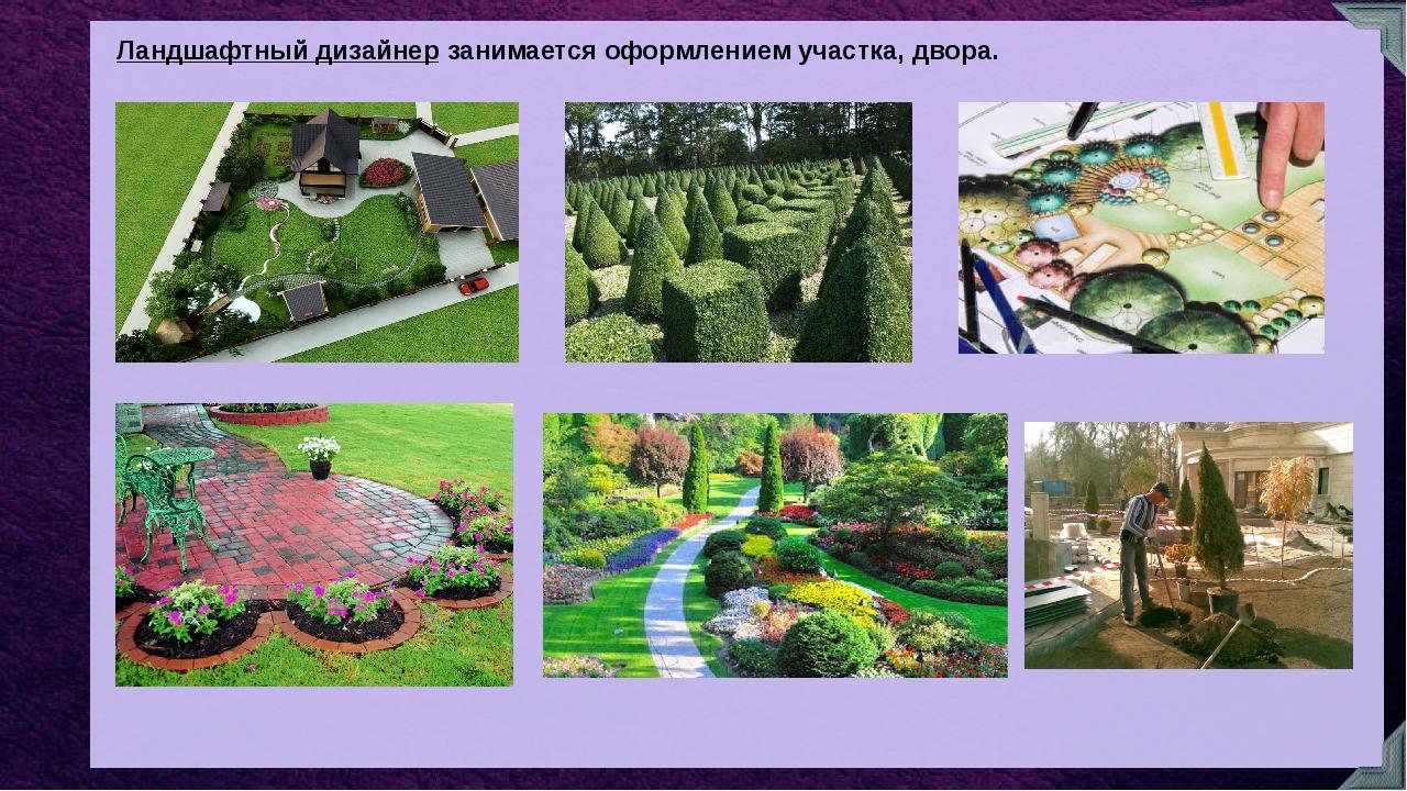 Ландшафтный дизайнер занимается оформлением участка, двора.