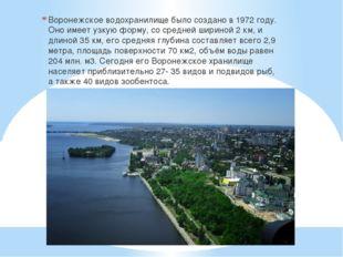 Воронежское водохранилище было создано в 1972 году. Оно имеет узкую форму, со