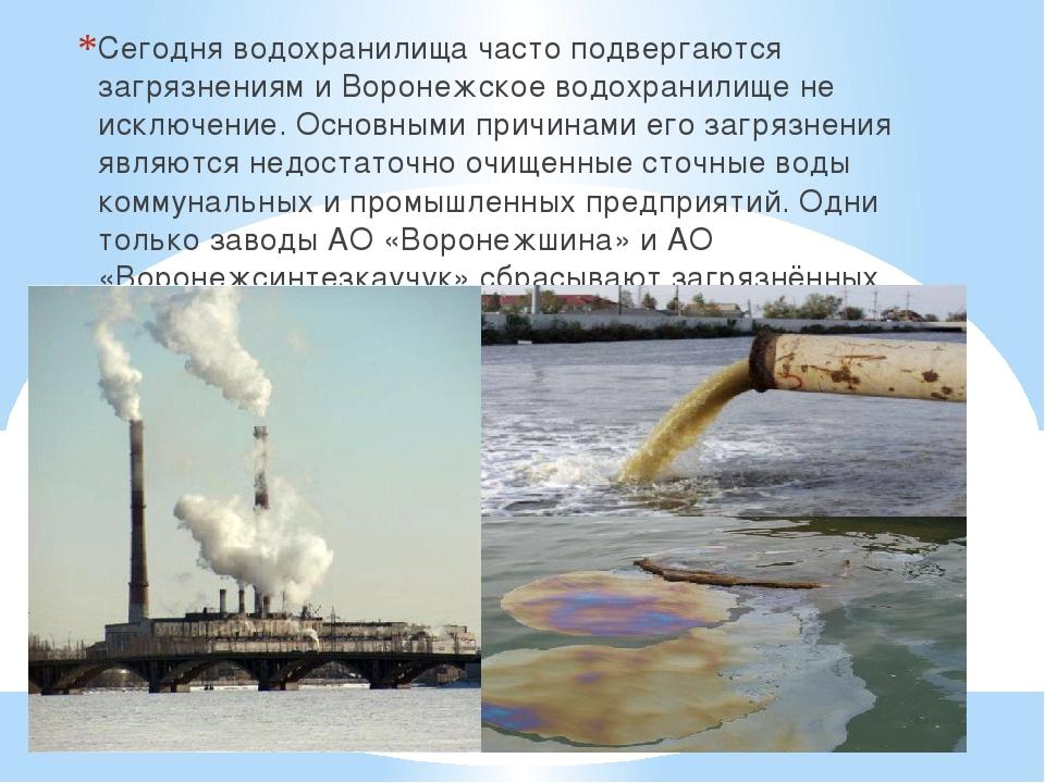 Сегодня водохранилища часто подвергаются загрязнениям и Воронежское водохрани...