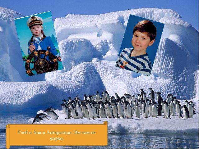 Глеб и Аня в Антарктиде. Им там не жарко.
