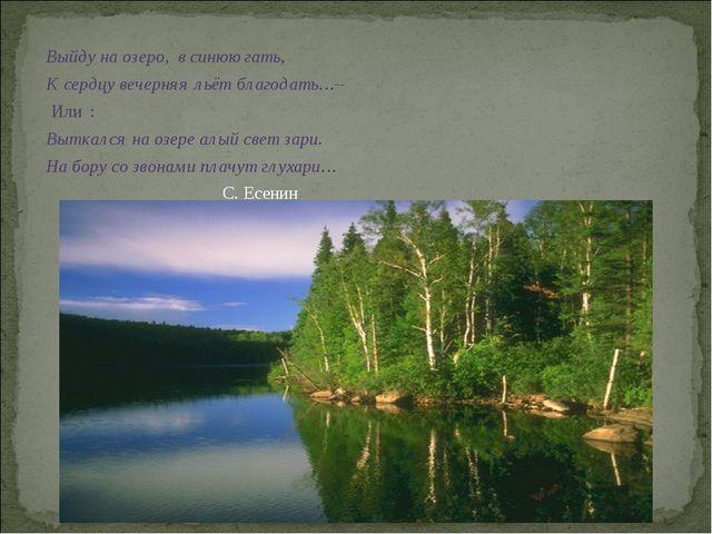 Выйду на озеро, в синюю гать, К сердцу вечерняя льёт благодать…-- Или : Вытка...