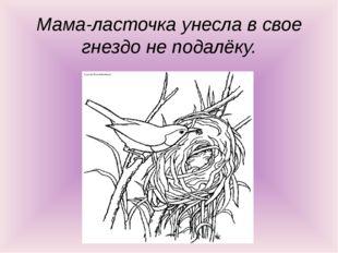 Мама-ласточка унесла в свое гнездо не подалёку.