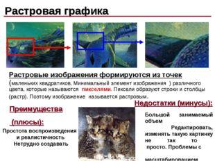 Растровая графика Растровые изображения формируются из точек (маленьких квадр