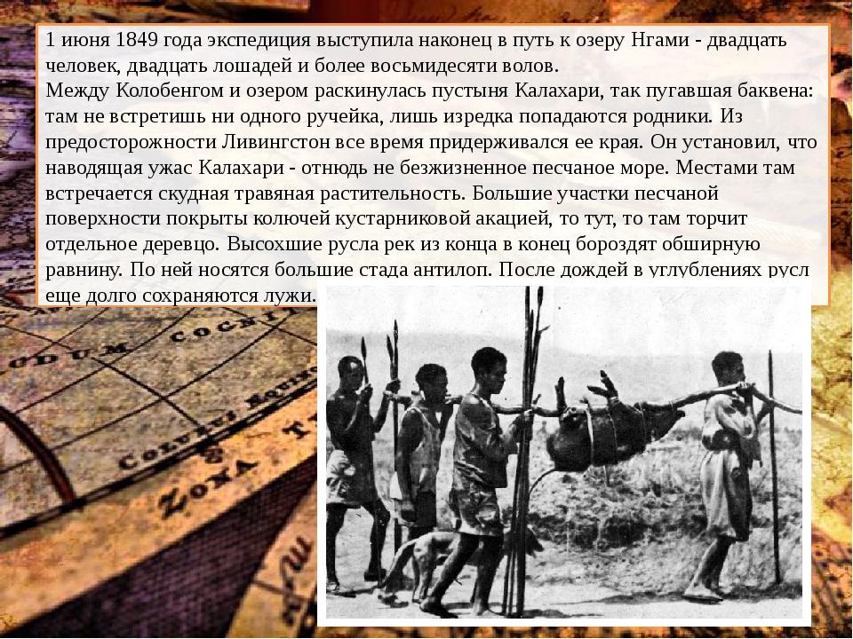 1 июня 1849 года экспедиция выступила наконец в путь к озеру Нгами - двадцат...