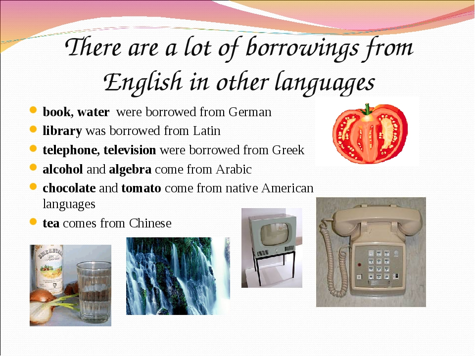 There are a lot of borrowings from English in other languages book, water wer...