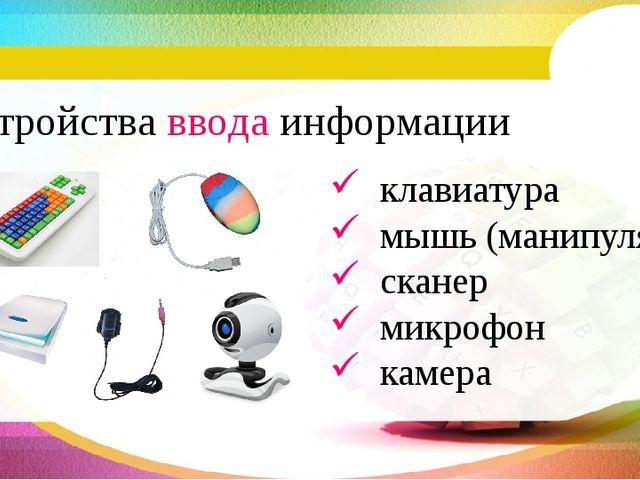 Устройства ввода информации клавиатура мышь (манипулятор) сканер микрофон кам...