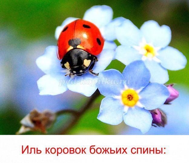 hello_html_3ba1a4b4.jpg