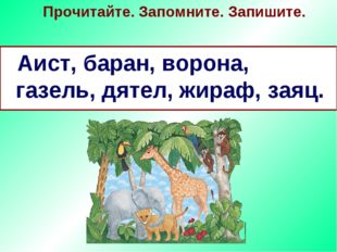 Прочитайте. Запомните. Запишите. Аист, баран, ворона, газель, дятел, жираф, з