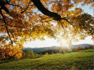 Поэтическая страничка Посмотри, как тихо позолоту Осень рассыпает на полях. А
