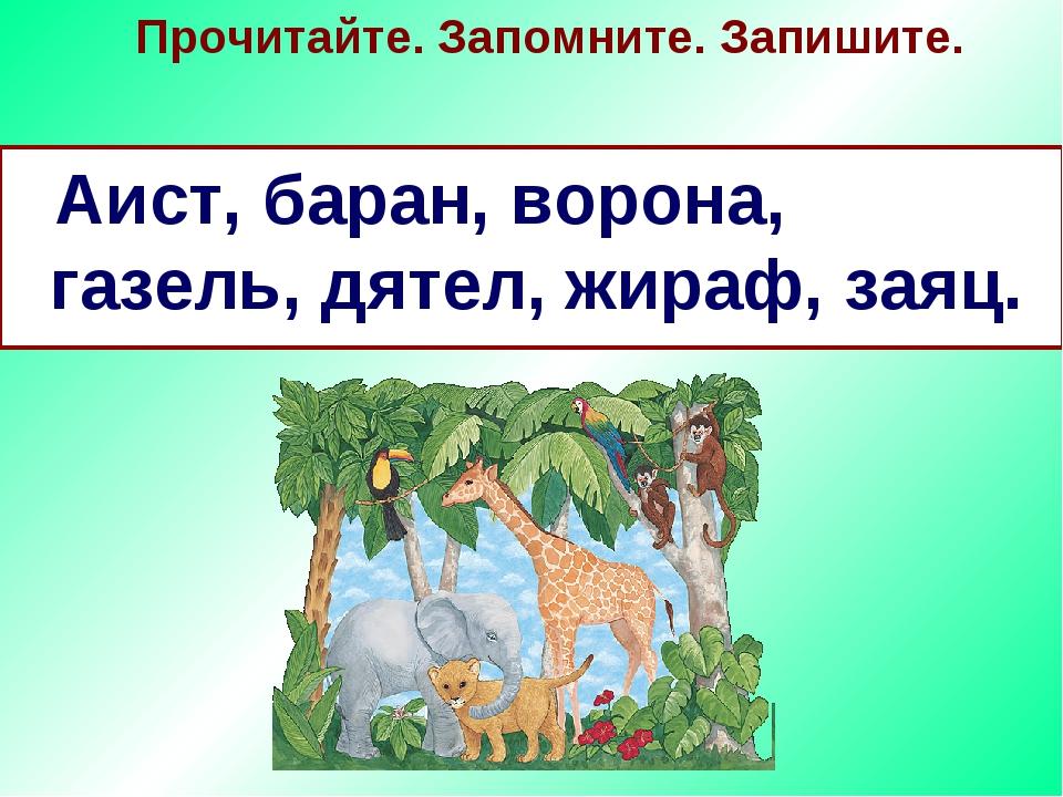Прочитайте. Запомните. Запишите. Аист, баран, ворона, газель, дятел, жираф, з...
