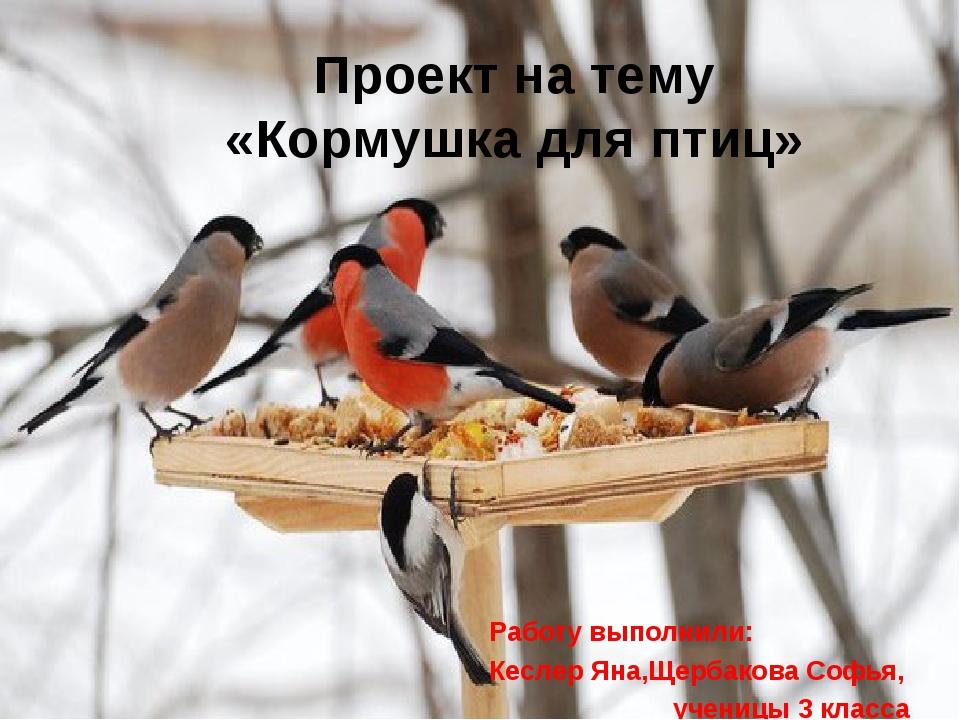 Кормушка для птиц сделали работу Кеслер Яна и Щербакова Софья Проект на тему...