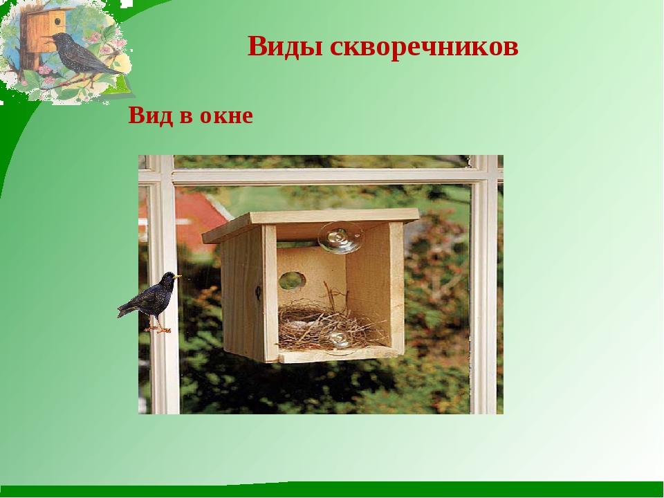 Виды скворечников Вид в окне