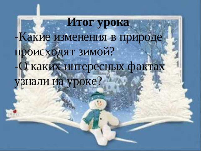 Итог урока -Какие изменения в природе происходят зимой? -О каких интересных ф...