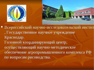 Всероссийский научно-исследовательский институт риса, Государственное научно