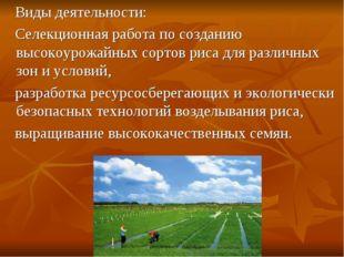 Виды деятельности: Селекционная работа по созданию высокоурожайных сортов ри