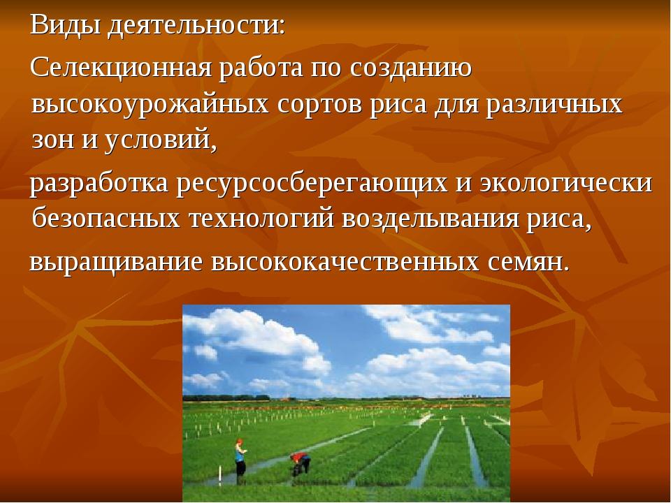 Виды деятельности: Селекционная работа по созданию высокоурожайных сортов ри...