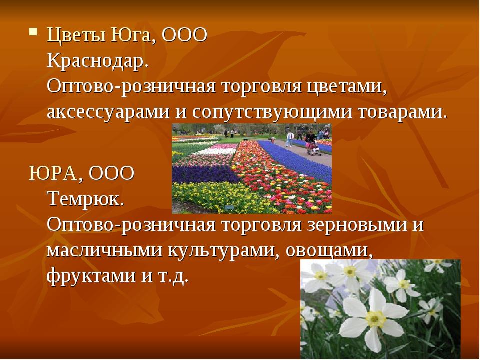 Цветы Юга, ООО Краснодар. Оптово-розничная торговля цветами, аксессуарами и с...