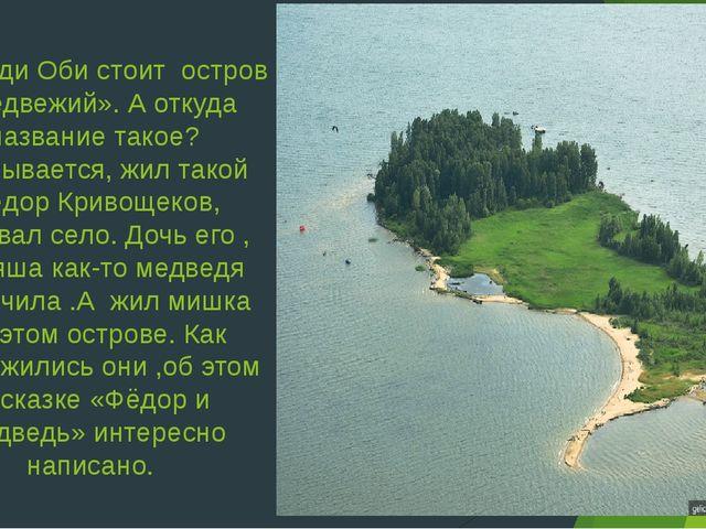 Посреди Оби стоит остров «Медвежий». А откуда название такое? Оказывается, жи...