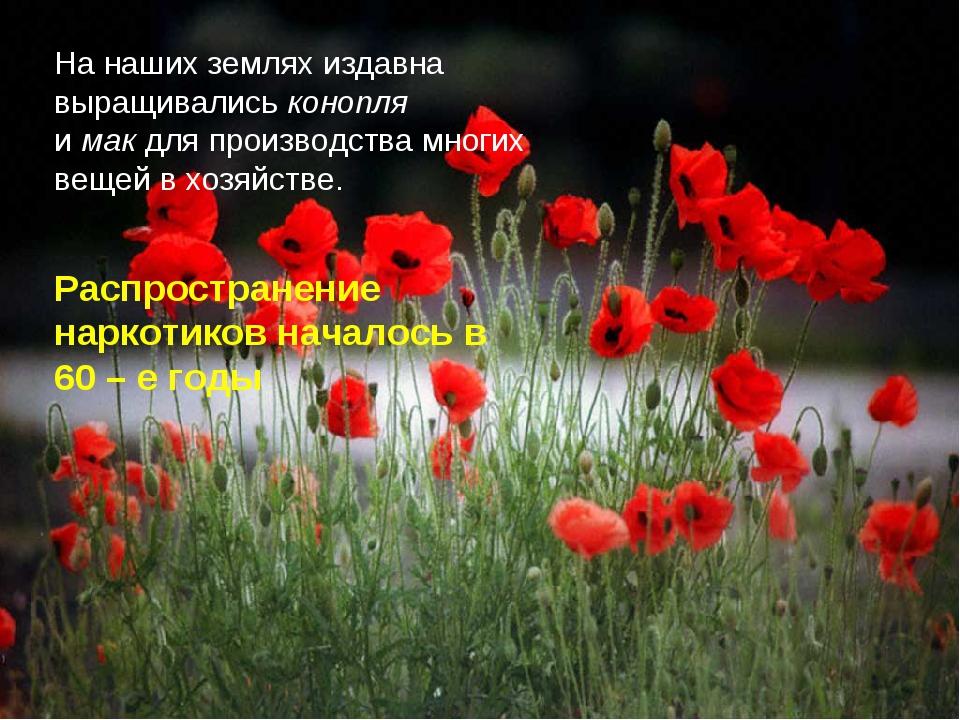 На наших землях издавна выращивались конопля и мак для производства многих ве...