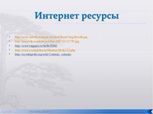http://www.darwin.museum.ru/expos/floor2/Img/drozdb.jpg http://gorod.dp.ua/ph