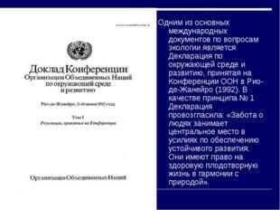 Одним из основных международных документов по вопросам экологии является Декл