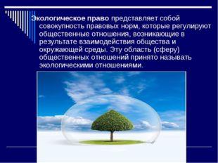 Экологическое право представляет собой совокупность правовых норм, которые ре