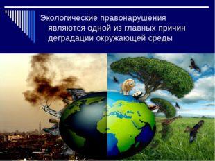 Экологические правонарушения являются одной из главных причин деградации окру