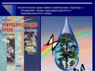 Экологическое право имеет комплексную структуру — объединяет нормы природорес