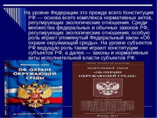 На уровне Федерации это прежде всего Конституция РФ — основа всего комплекса