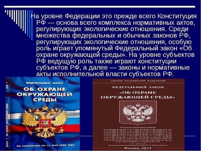 На уровне Федерации это прежде всего Конституция РФ — основа всего комплекса...