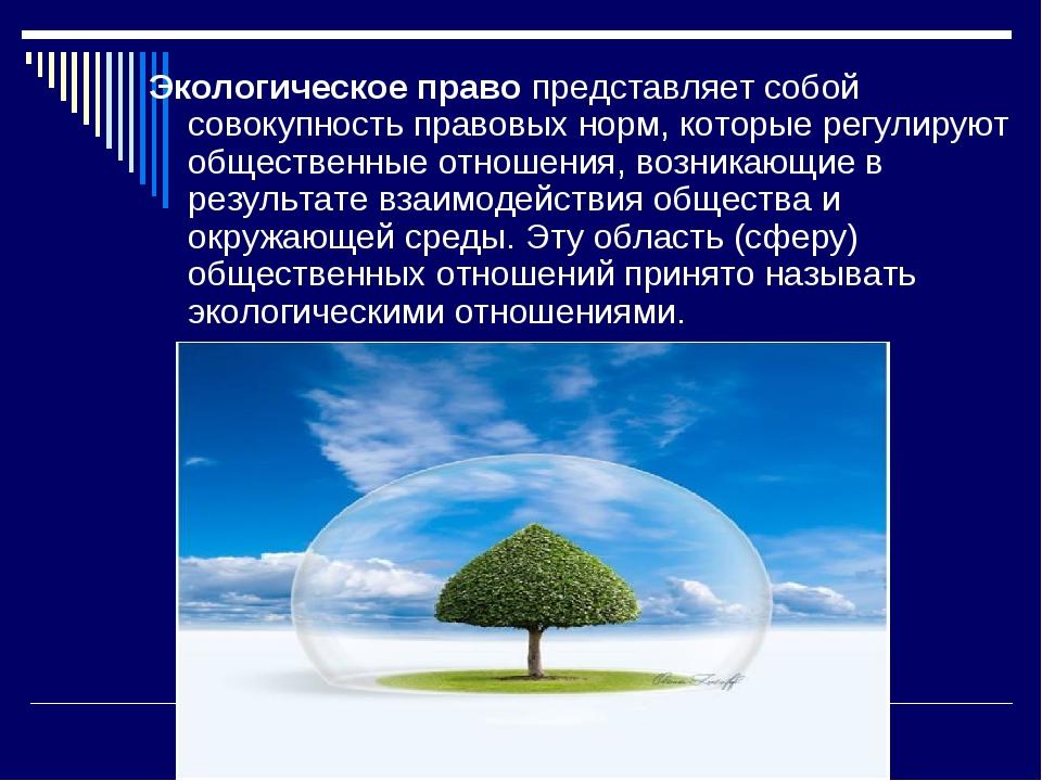 Экологическое право представляет собой совокупность правовых норм, которые ре...