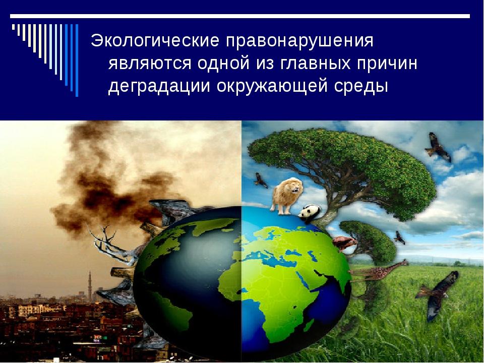 Экологические правонарушения являются одной из главных причин деградации окру...