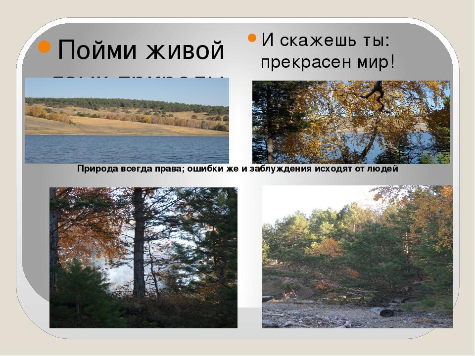 Пойми живой язык природы — И скажешь ты: прекрасен мир! Природа всегда права...