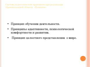 Система педагогических принципов при реализации образовательной области «Позн