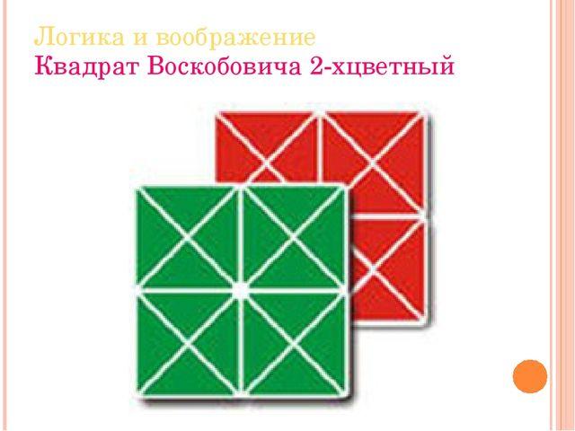 Логика и воображение Квадрат Воскобовича 2-хцветный