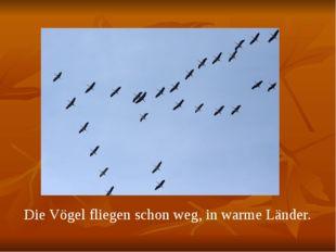Die Vögel fliegen schon weg, in warme Länder.