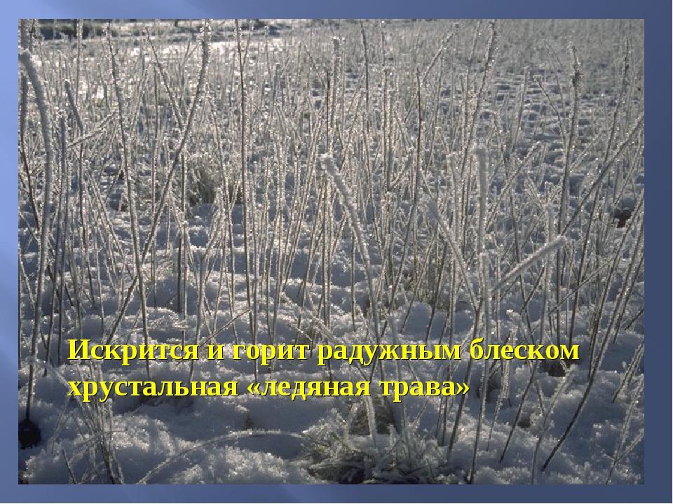 Искрится и горит радужным блеском хрустальная «ледяная трава»