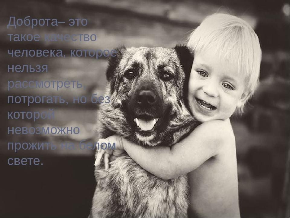 Доброта– это такое качество человека, которое нельзя рассмотреть, потрогать,...