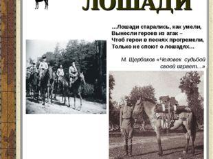 ЛОШАДИ …Лошади старались, как умели, Вынесли героев из атак – Чтоб герои в пе