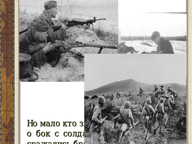 Но мало кто знает, что в то время бок о бок с солдатами гордо и отважно сража...