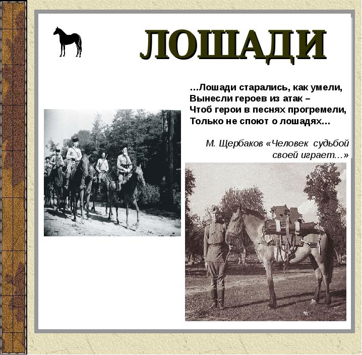ЛОШАДИ …Лошади старались, как умели, Вынесли героев из атак – Чтоб герои в пе...