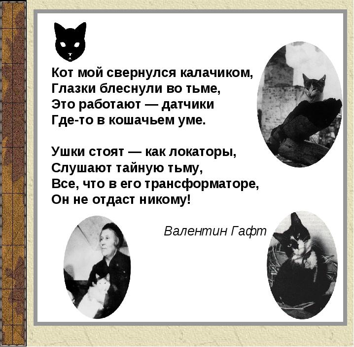 Кот мой свернулся калачиком, Глазки блеснули во тьме, Это работают — датчики...