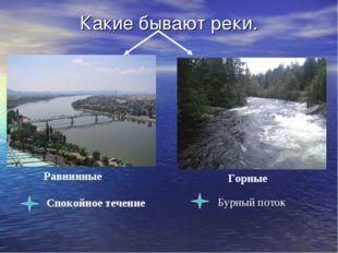 Какие бывают реки. Равнинные Горные Спокойное течение Бурный поток