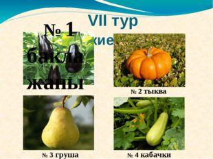 VII тур Логические цепочки № 1 баклажаны № 2 тыква № 3 груша № 4 кабачки